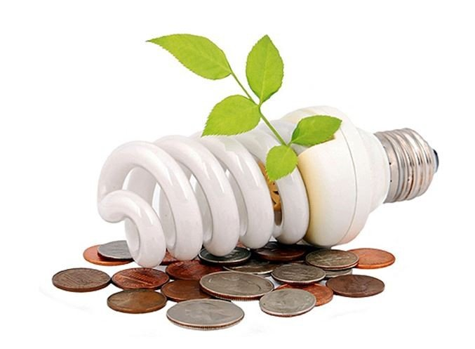 moneypapa energy saving bulbs