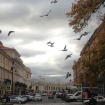 MoneyPapa.ru НаХоду 10 - Площадь Искусств