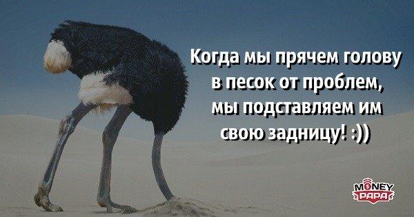 moneypapa.ru-kogda-my-pryachem-golovu-v-pesok-ot-problem